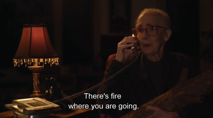 311 log lady fire