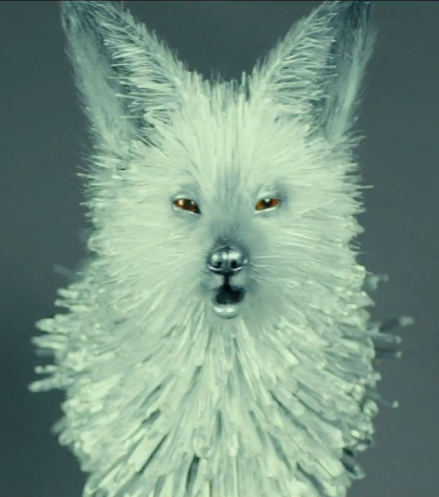 Crystal Fox